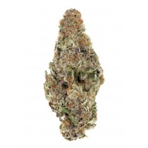 Apple Fritter - By Formula BC *AAAA Quad*