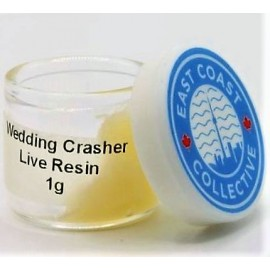 Live Resin | Wedding Crasher