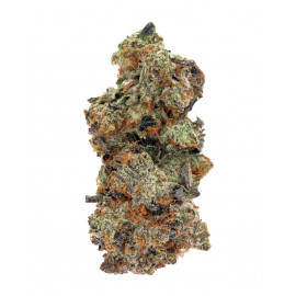 Monkey Mints - By East Coast Collective *AAAA Quad*