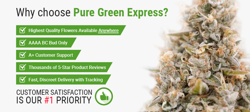Why Choose Pure Green Express